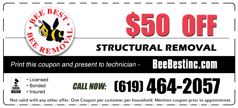 2015-coupon-structureremoval-sandiego-50