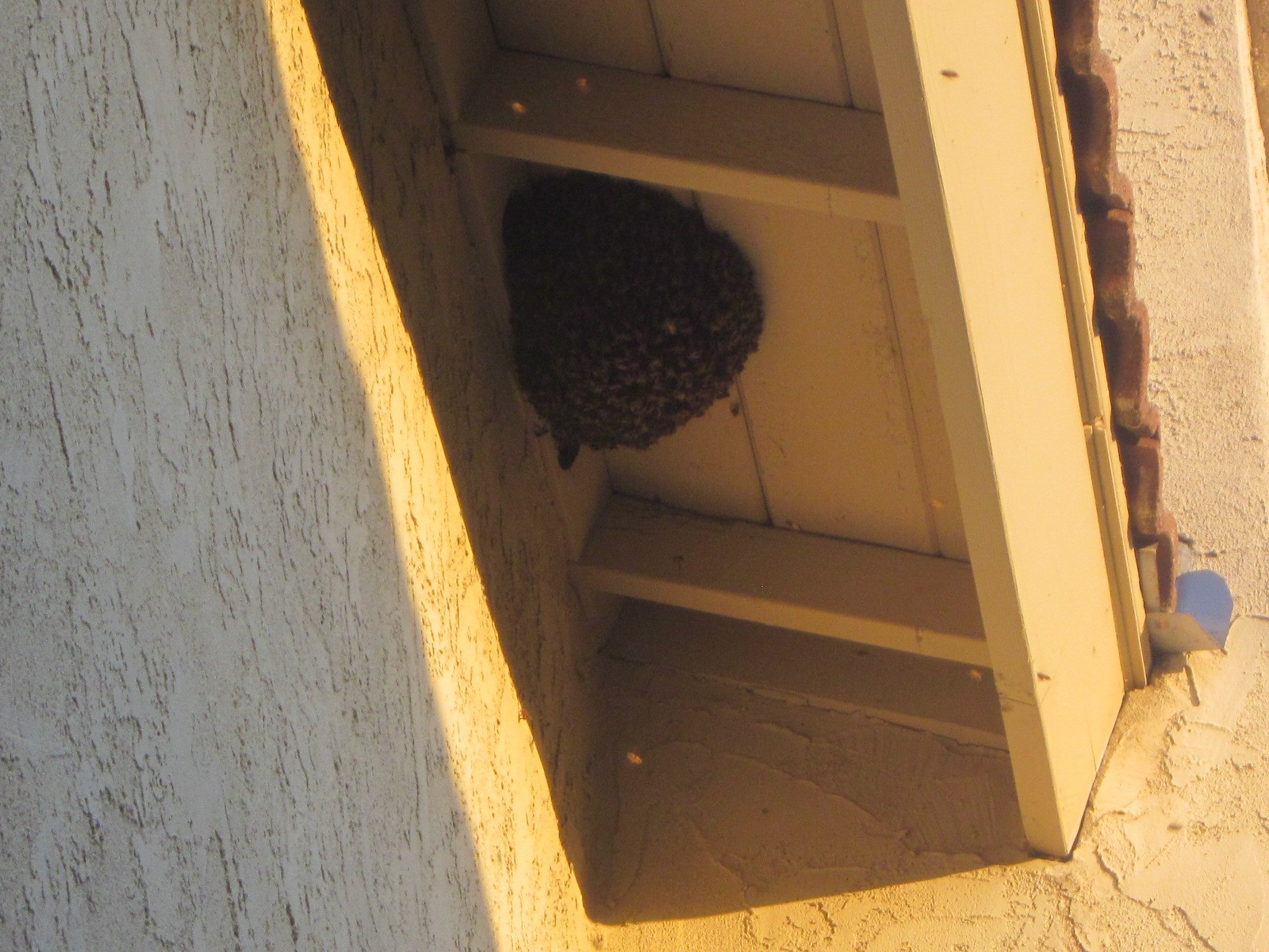 View Larger Image bee swarm on top of attic vent holes & Bees and Attic Vent Holes | Bee Best Bee Removal