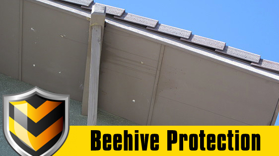 beehive-protection