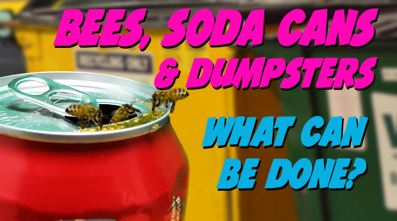 bees-soda-dumpsters